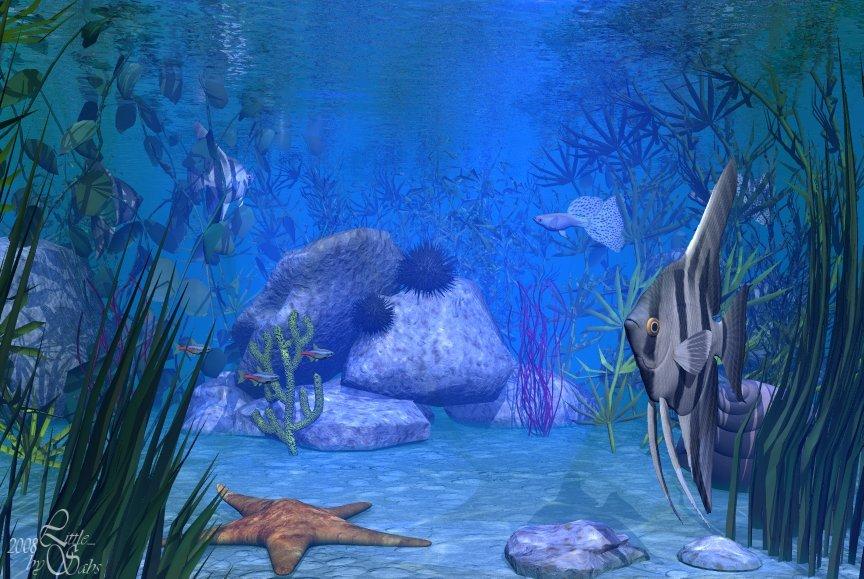 kleine Unterwasserszene