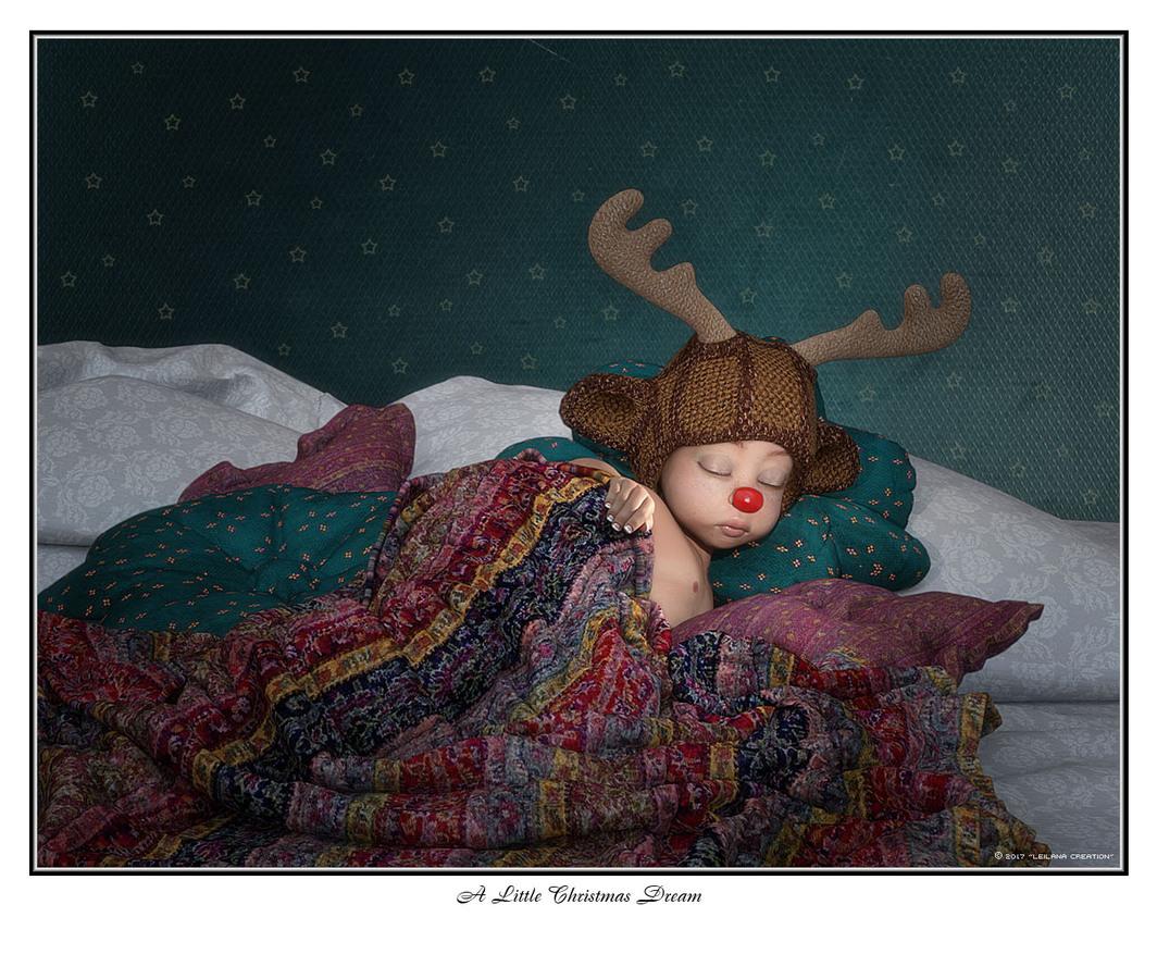 A Little Christmas Dream