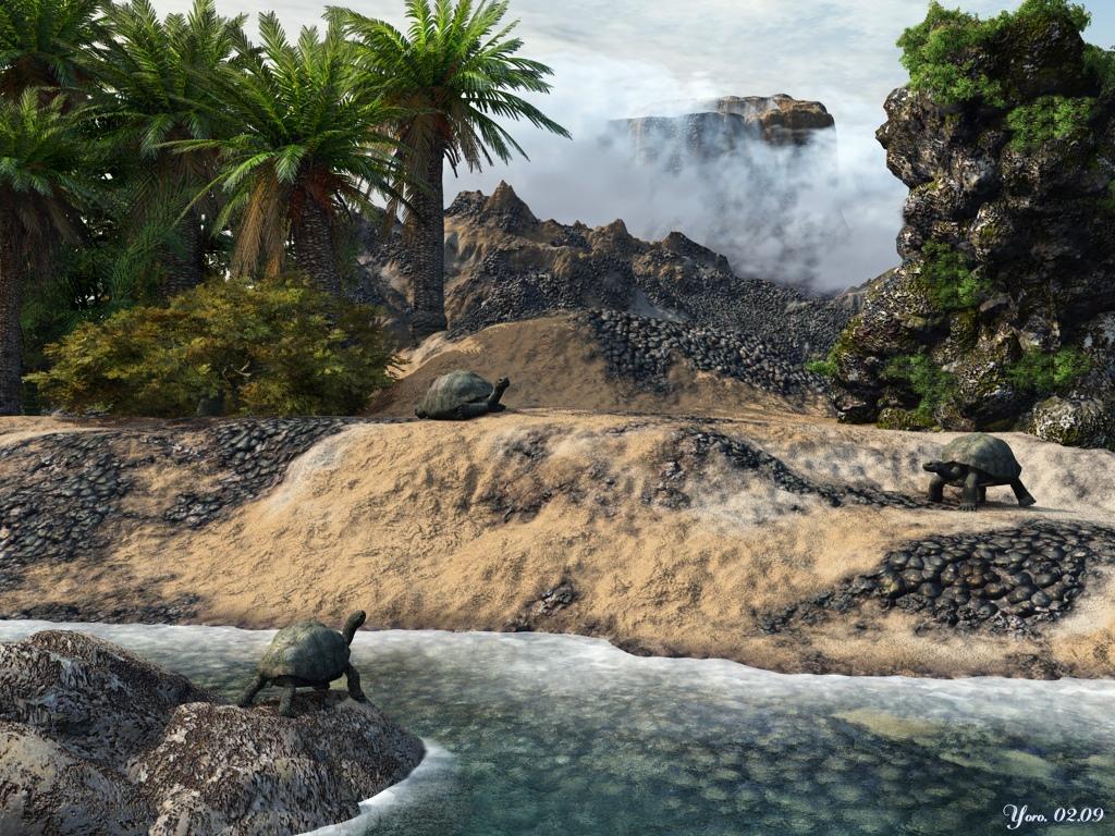 Die Insel der Schildkröten