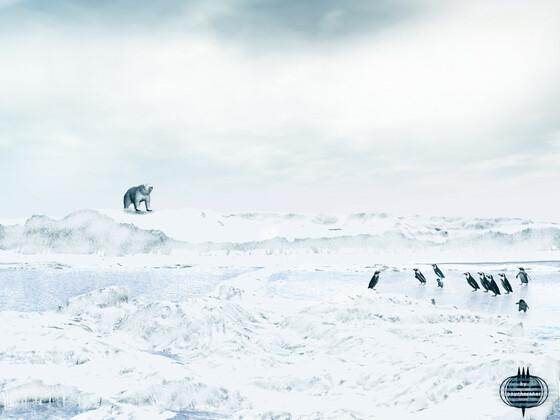 Land der Kälte