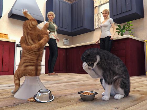 Blöder Katzenkragen!!