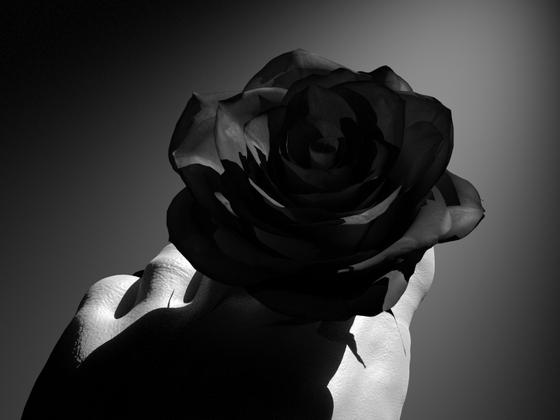 Black Rose I V2.0