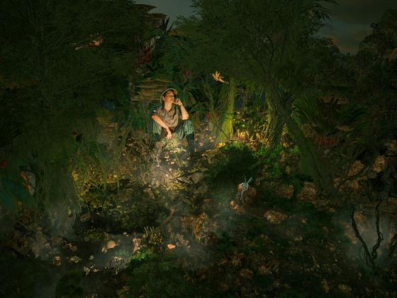 wenn es Abend wird im Zauberwald