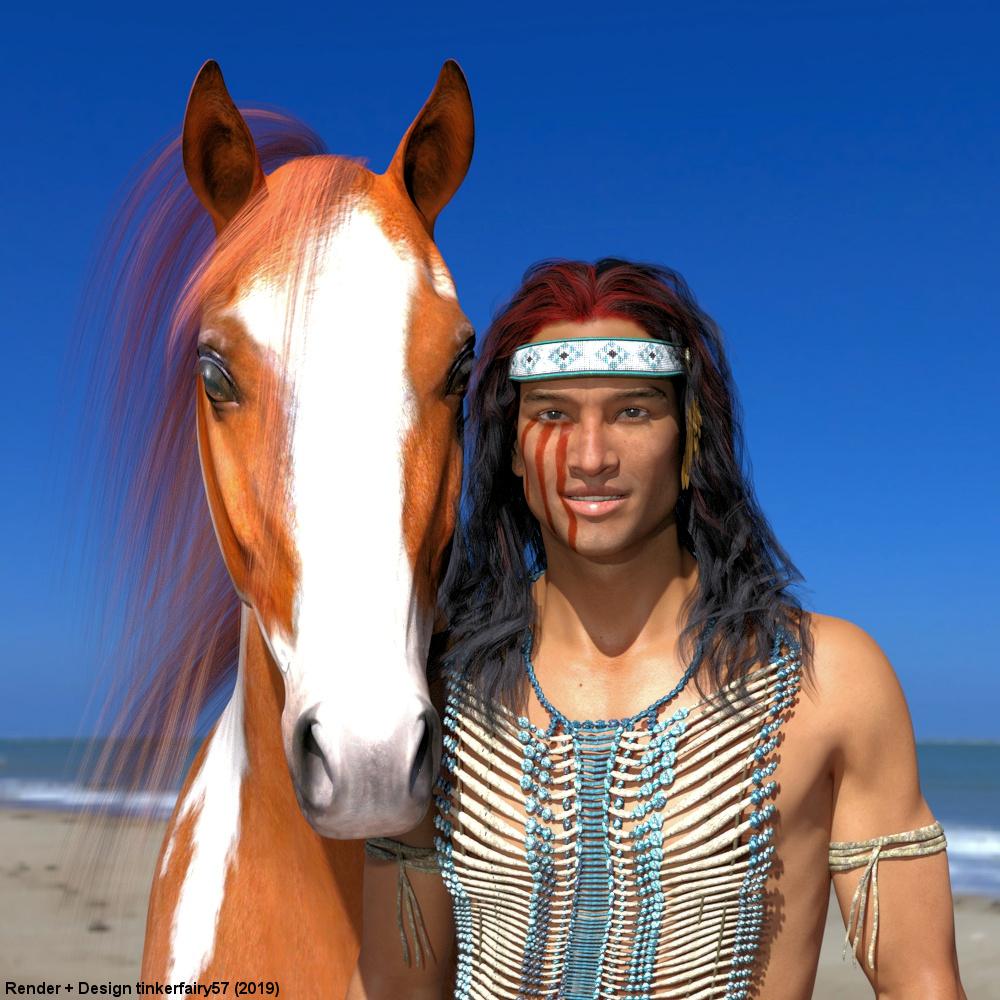 Indianer und sein Pferd