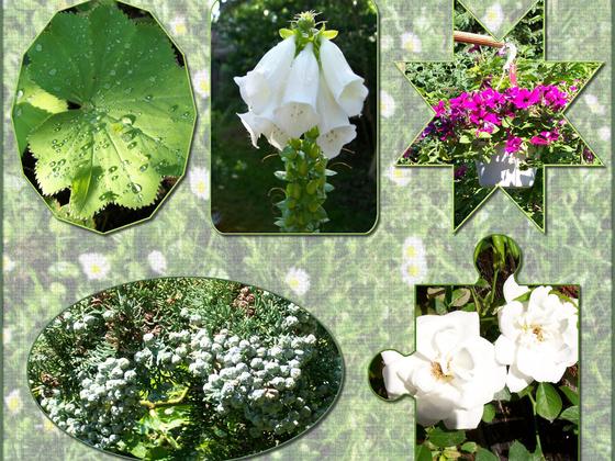 Blumencollage