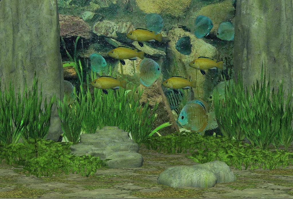 Unterwasser Scene C