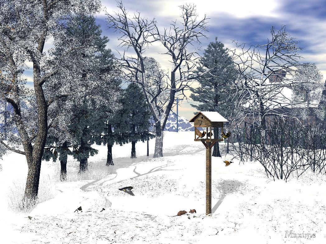 Ein ruhiger Wintertag