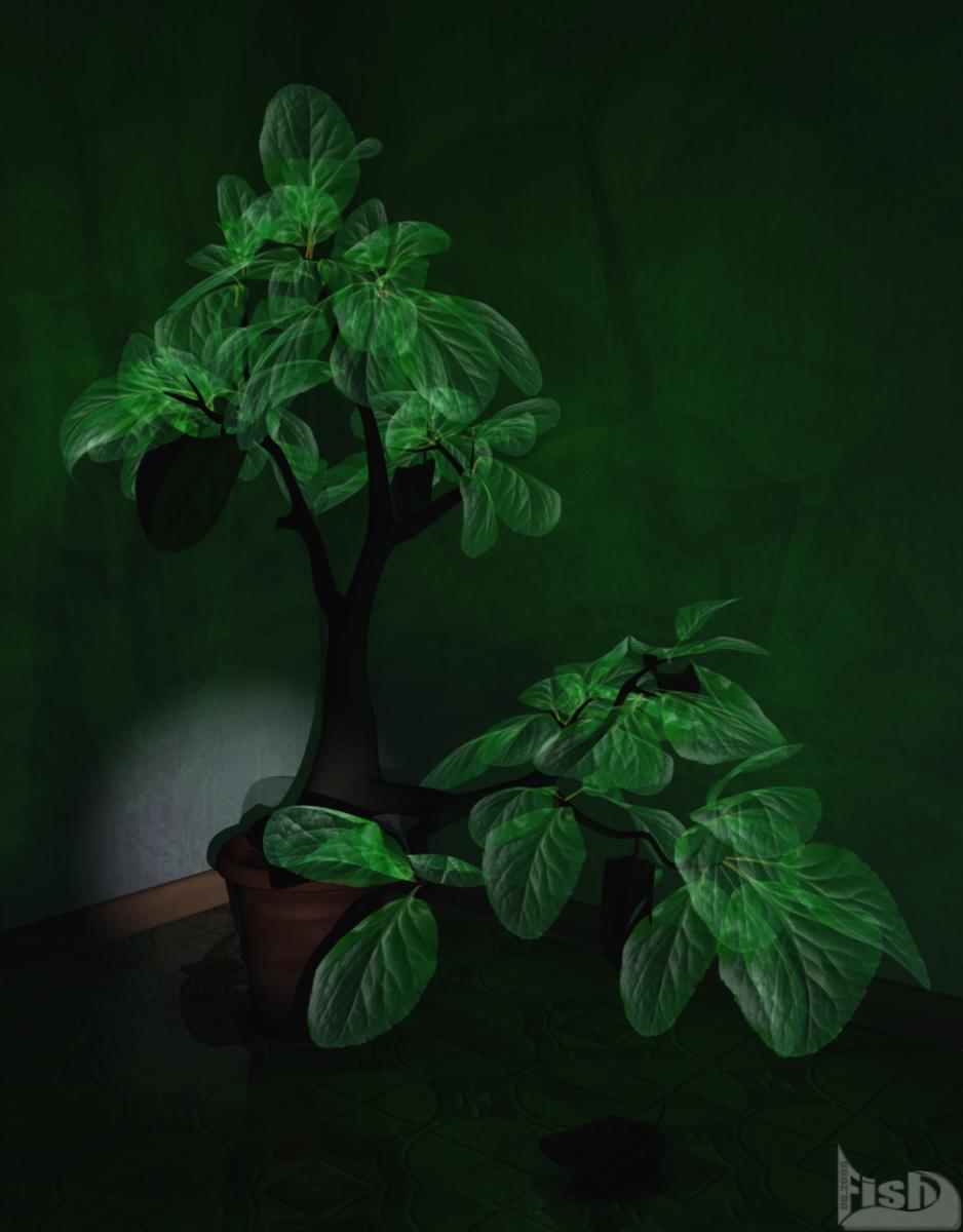 Secret Plant bei Nacht