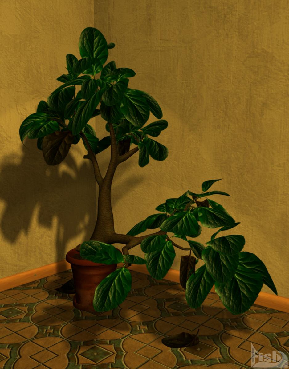 Secret Plant bei Tag