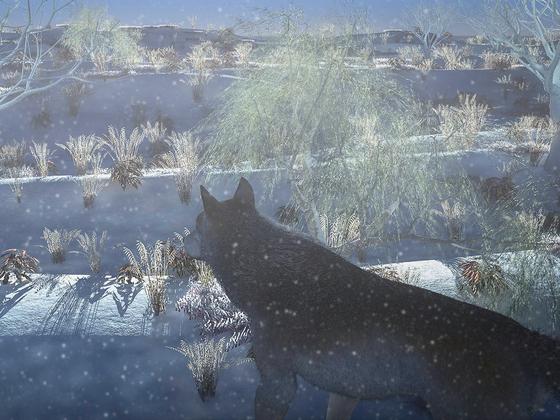 Winterliche Frühsonne