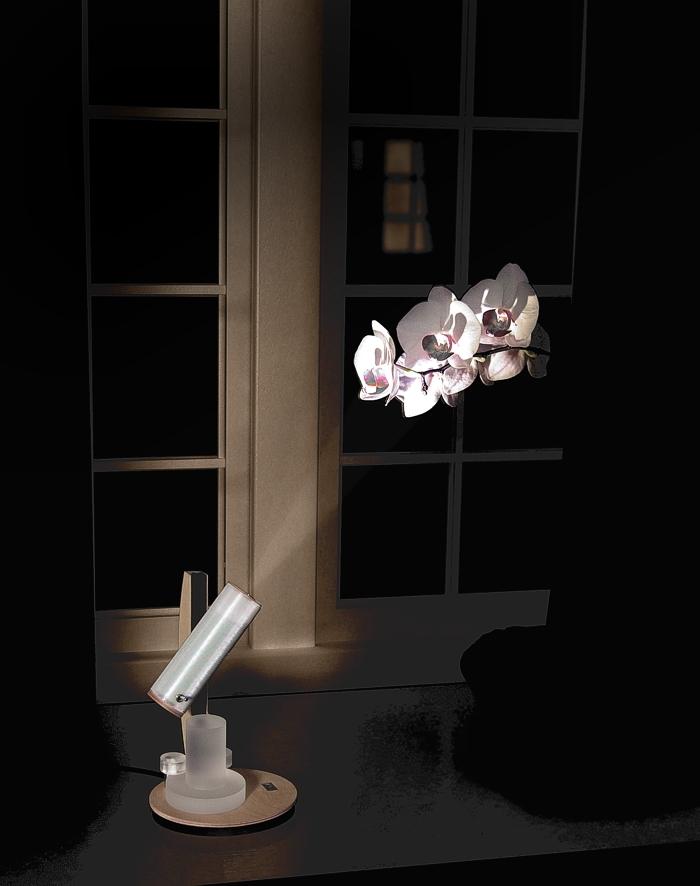 Fensterbrett_Orchidee5_2_Montiert2-2-2.jpg