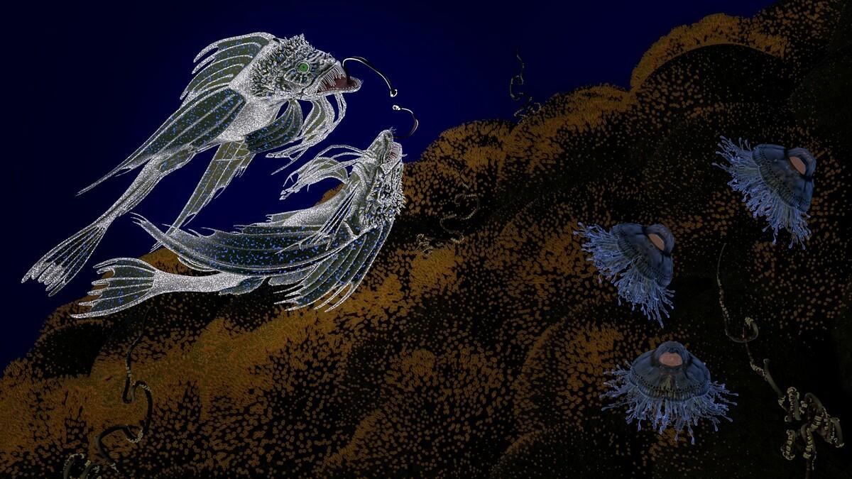 Tanz-der-Vipernfische