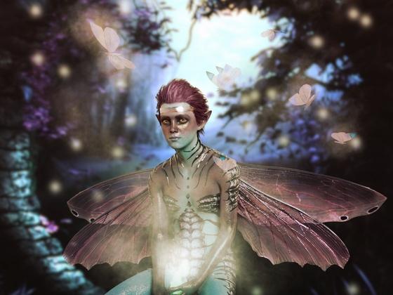Mitternachts Schmetterlinge...