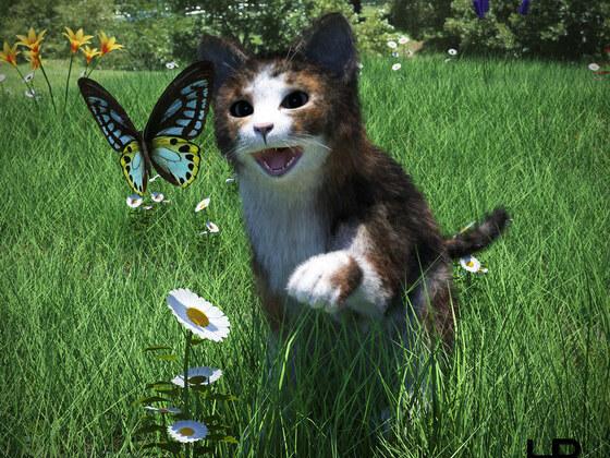 Junge Katze mit Schmetterling