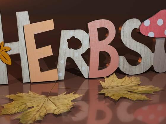 Herbstliches_vue