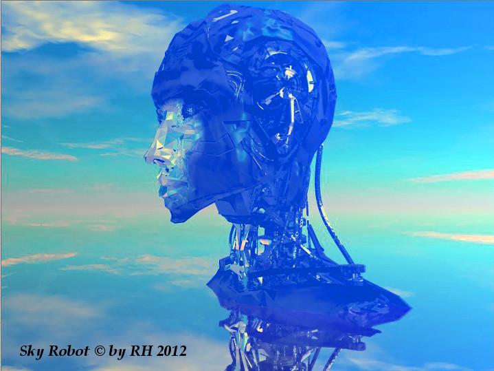 Sky Robot