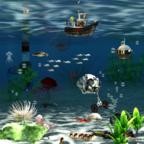 Unterwasserwelt 6