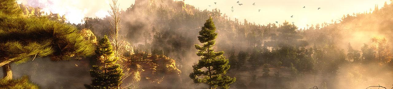 Darrethraws woodland